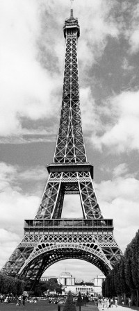 524 - Fotomural Eiffel Tower