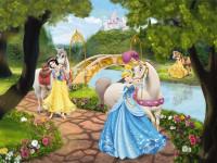 Fotomural 1-454 Princess Royal Gala