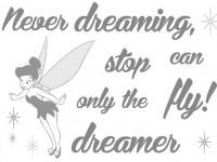 Sticker 14001 Disney Never Stop Dreaming
