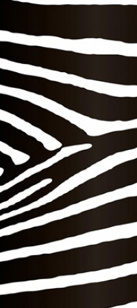 74504 - Wall Stripes Zebra