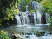 Fotomural 8-256 Pura Kaunui Falls