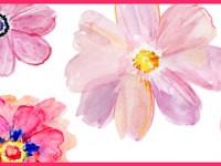 CEF008- Cenefa floral