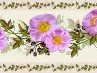 CEF023- Cenefa floral